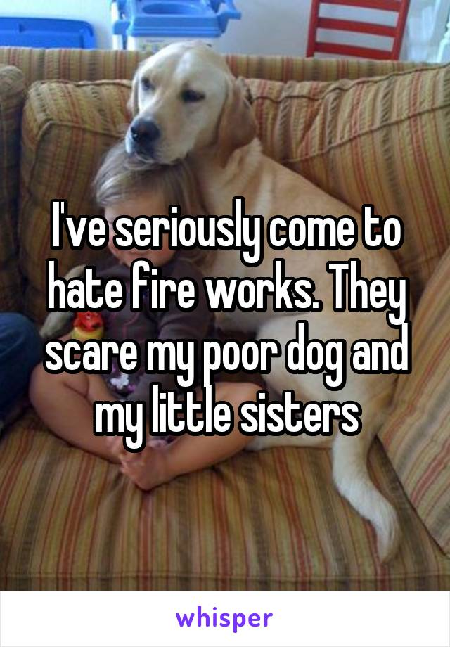 I've seriously come to hate fire works. They scare my poor dog and my little sisters