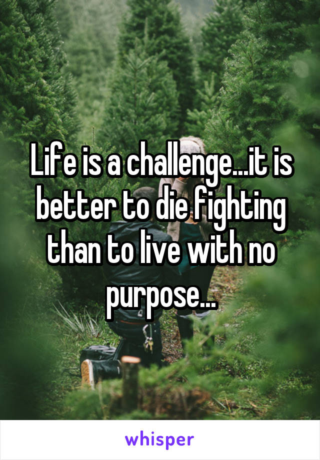 Life is a challenge...it is better to die fighting than to live with no purpose...