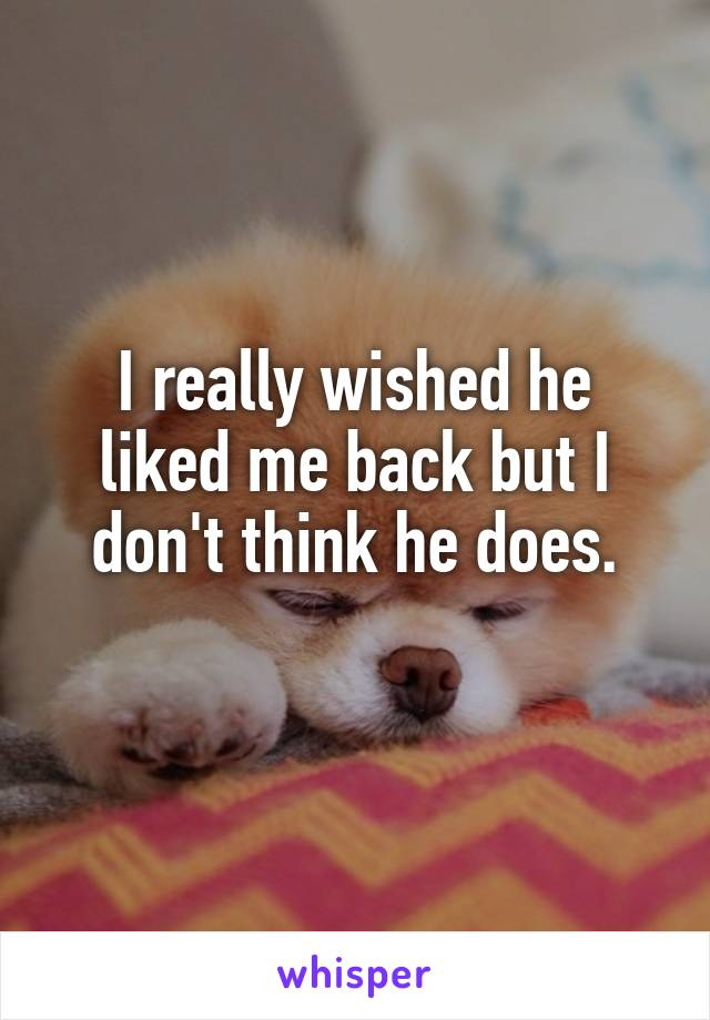 I really wished he liked me back but I don't think he does.