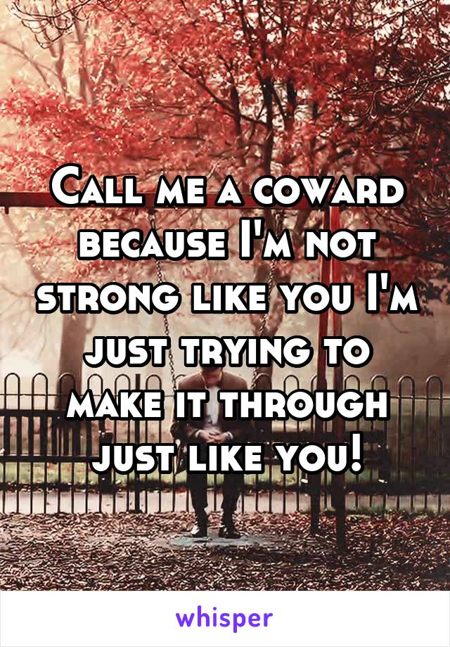 Call me a coward because I'm not strong like you I'm just trying to make it through just like you!