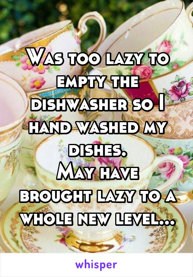 Was too lazy to empty the dishwasher so I hand washed my dishes. May have brought lazy to a whole new level...