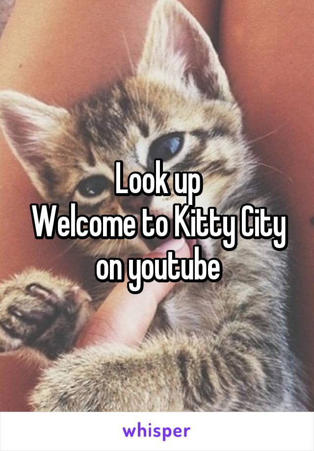 Look up Welcome to Kitty City on youtube