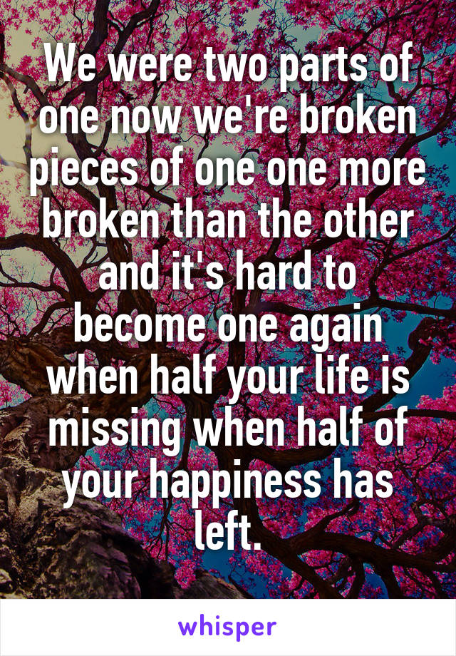 We were two parts of one now we're broken pieces of one one more broken than the other and it's hard to become one again when half your life is missing when half of your happiness has left.