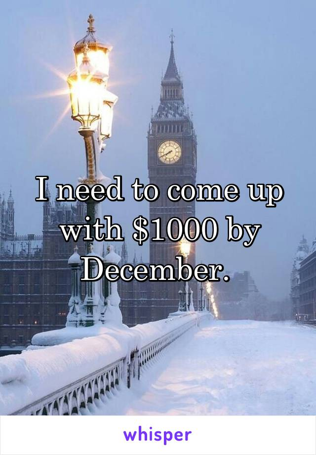 I need to come up with $1000 by December.