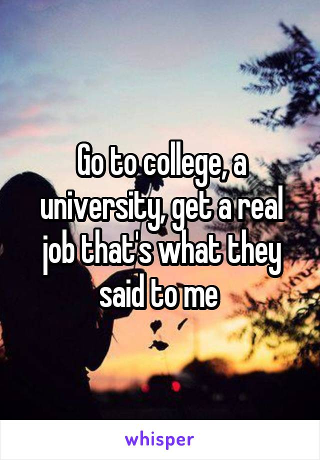 Go to college, a university, get a real job that's what they said to me
