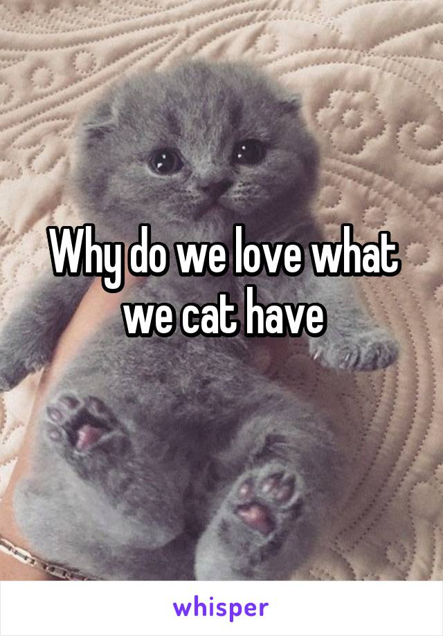 Why do we love what we cat have