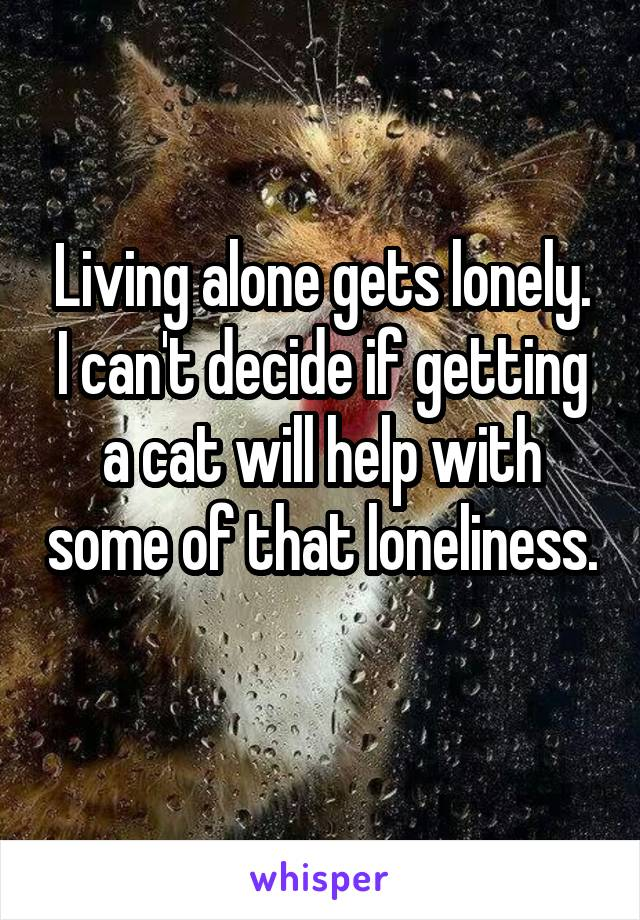 Living alone gets lonely. I can't decide if getting a cat will help with some of that loneliness.