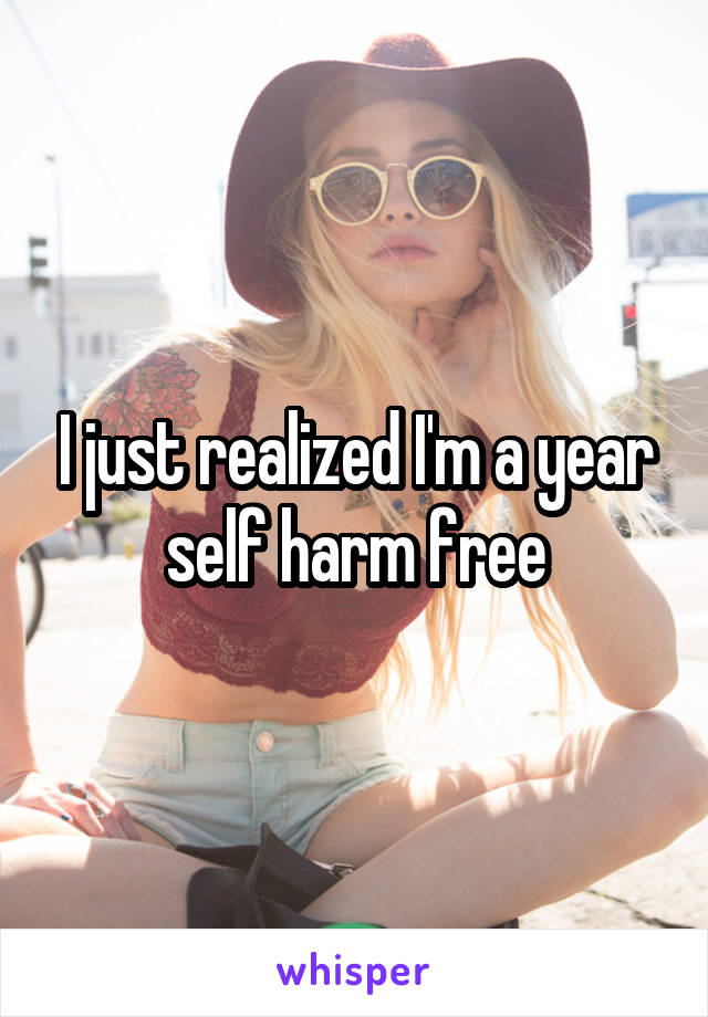 I just realized I'm a year self harm free