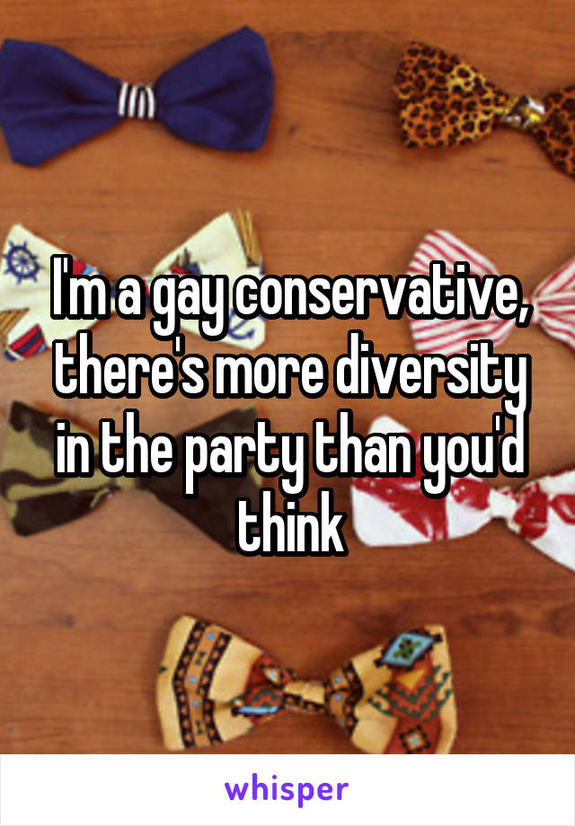 I'm a gay conservative, there's more diversity in the party than you'd think