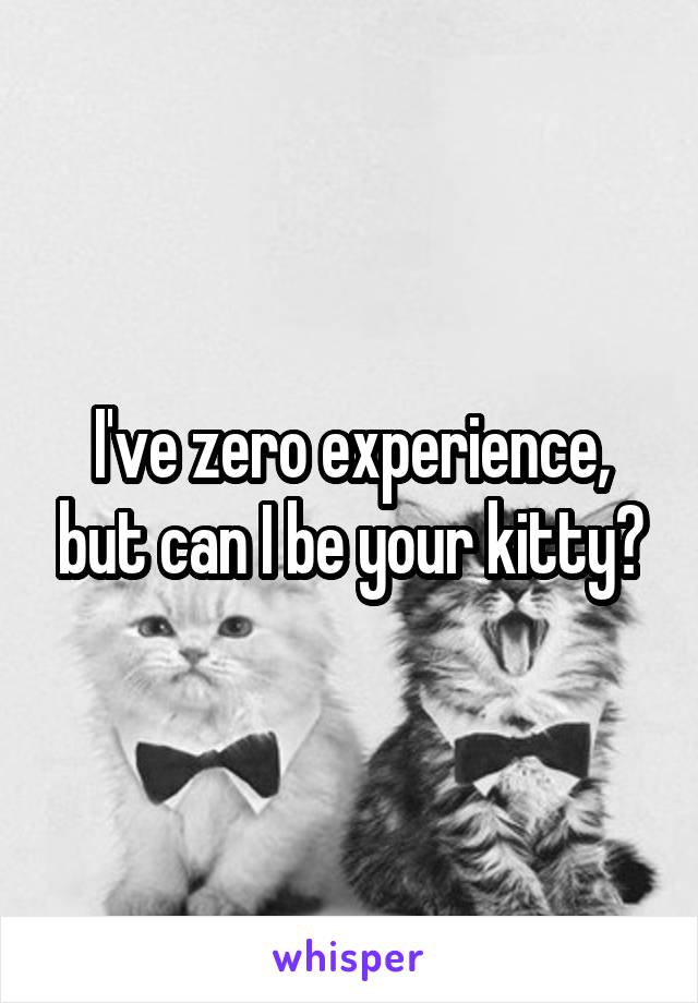 I've zero experience, but can I be your kitty?
