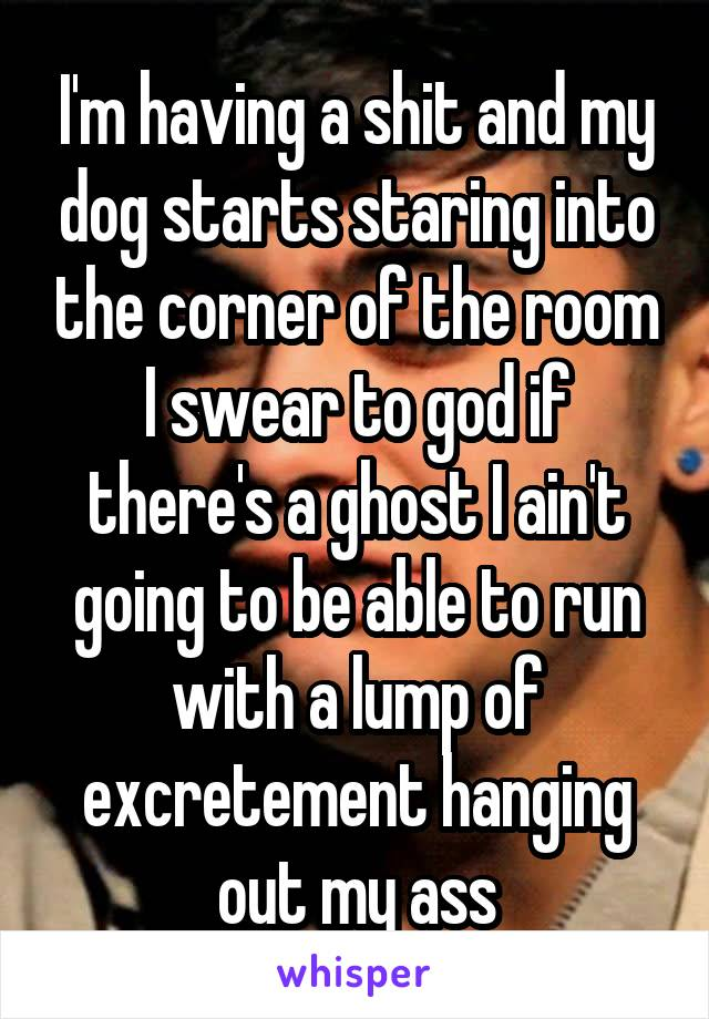 I'm having a shit and my dog starts staring into the corner of the room I swear to god if there's a ghost I ain't going to be able to run with a lump of excretement hanging out my ass