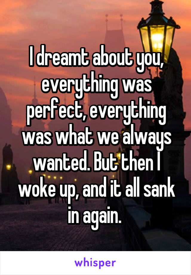 I dreamt about you, everything was perfect, everything was what we always wanted. But then I woke up, and it all sank in again.