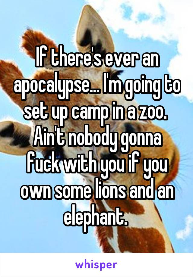 If there's ever an apocalypse... I'm going to set up camp in a zoo.  Ain't nobody gonna fuck with you if you own some lions and an elephant.