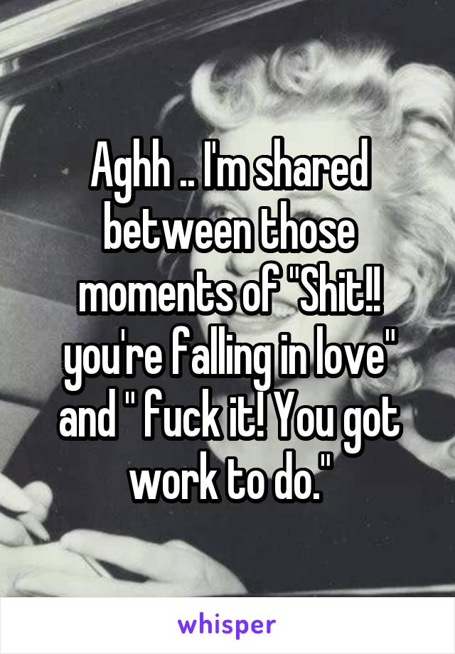 """Aghh .. I'm shared between those moments of """"Shit!! you're falling in love"""" and """" fuck it! You got work to do."""""""