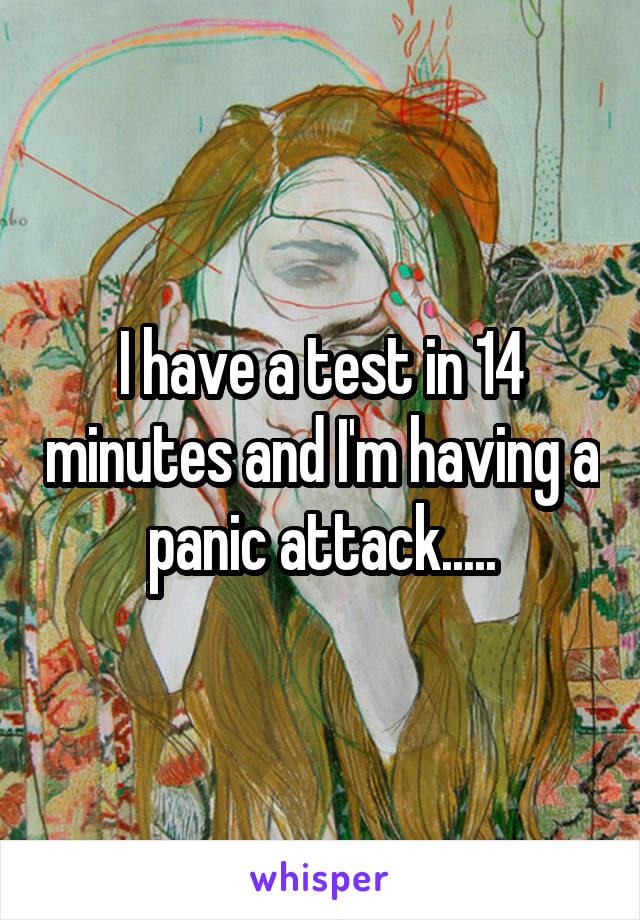 I have a test in 14 minutes and I'm having a panic attack.....