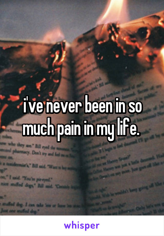 i've never been in so much pain in my life.