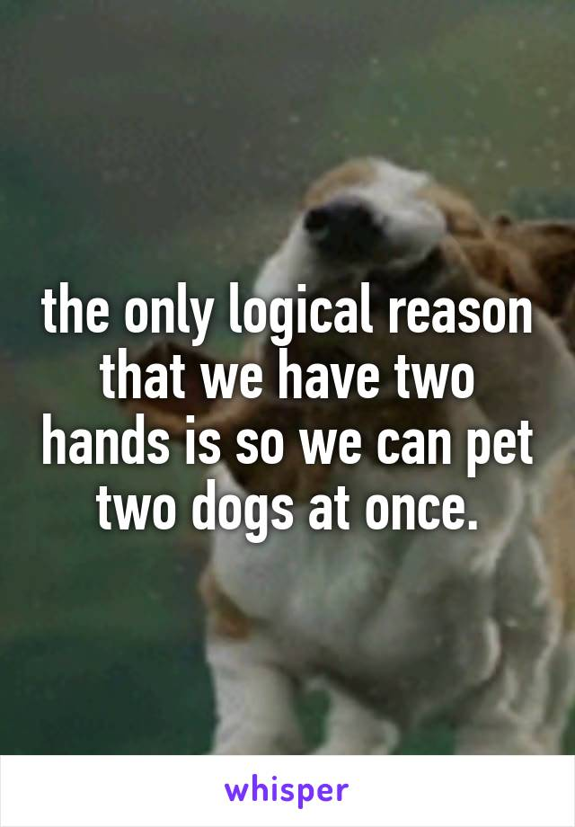 the only logical reason that we have two hands is so we can pet two dogs at once.