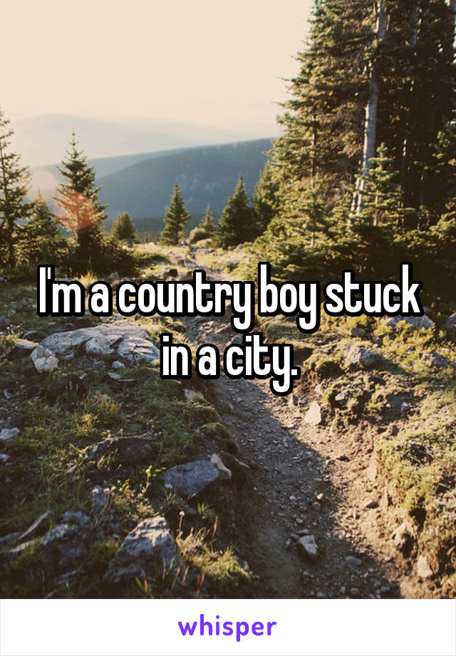 I'm a country boy stuck in a city.