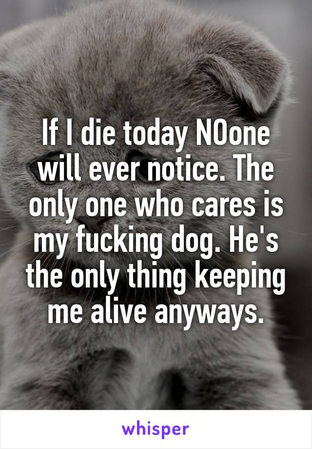 If I die today NOone will ever notice. The only one who cares is my fucking dog. He's the only thing keeping me alive anyways.