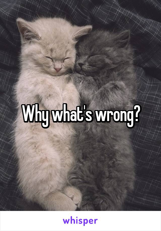 Why what's wrong?