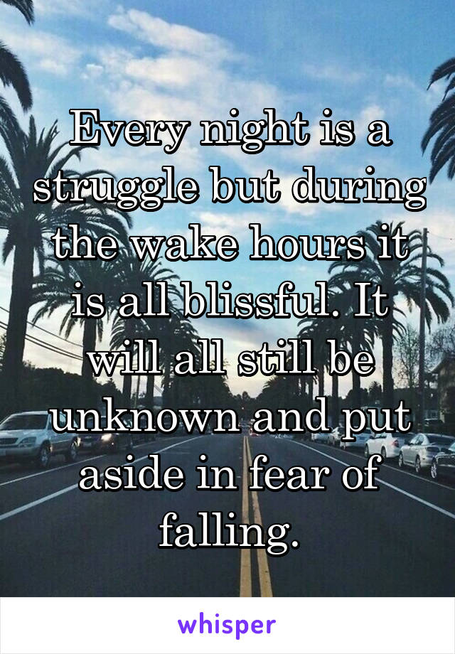 Every night is a struggle but during the wake hours it is all blissful. It will all still be unknown and put aside in fear of falling.