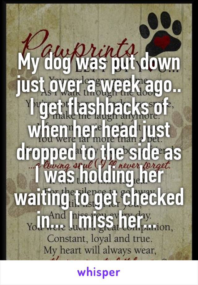 My dog was put down just over a week ago.. I get flashbacks of when her head just dropped to the side as I was holding her waiting to get checked in... I miss her...