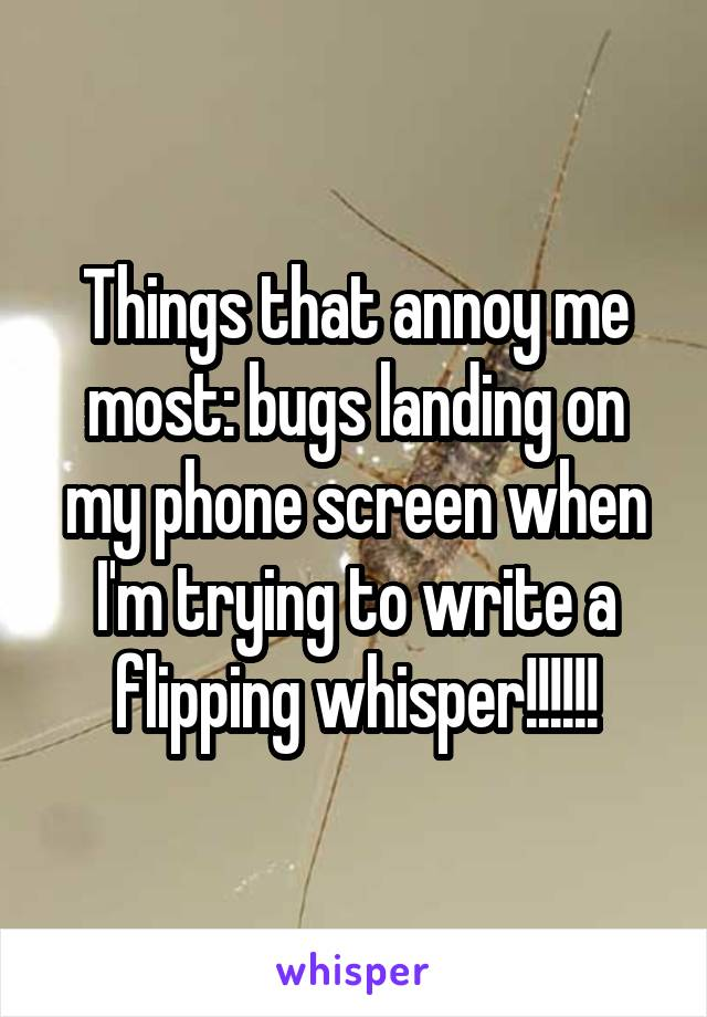 Things that annoy me most: bugs landing on my phone screen when I'm trying to write a flipping whisper!!!!!!