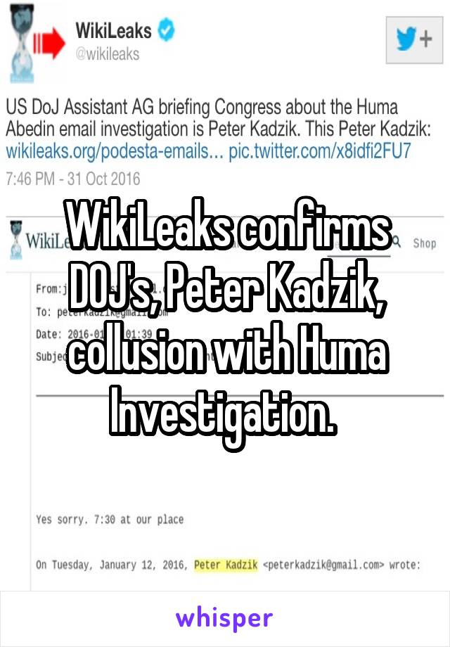 WikiLeaks confirms DOJ's, Peter Kadzik, collusion with Huma Investigation.