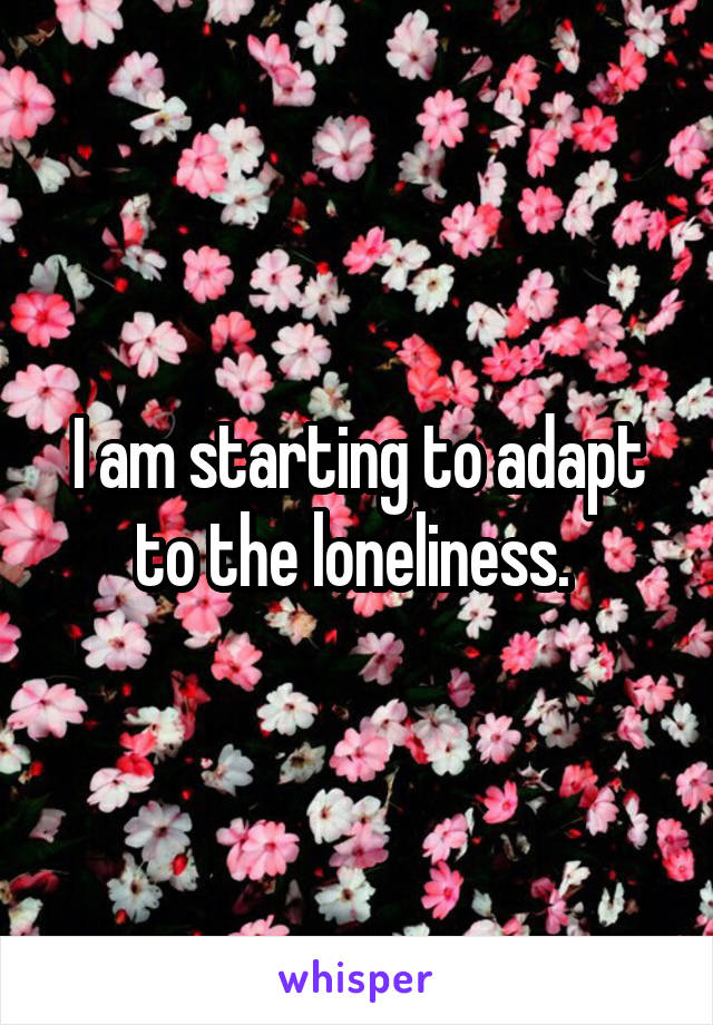 I am starting to adapt to the loneliness.