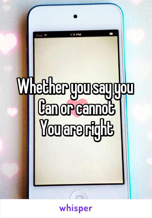 Whether you say you  Can or cannot You are right
