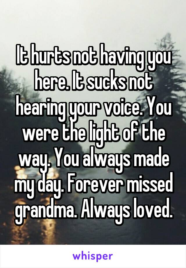 It hurts not having you here. It sucks not hearing your voice. You were the light of the way. You always made my day. Forever missed grandma. Always loved.