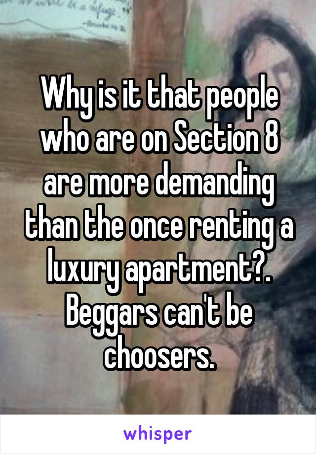 Why is it that people who are on Section 8 are more demanding than the once renting a luxury apartment?. Beggars can't be choosers.