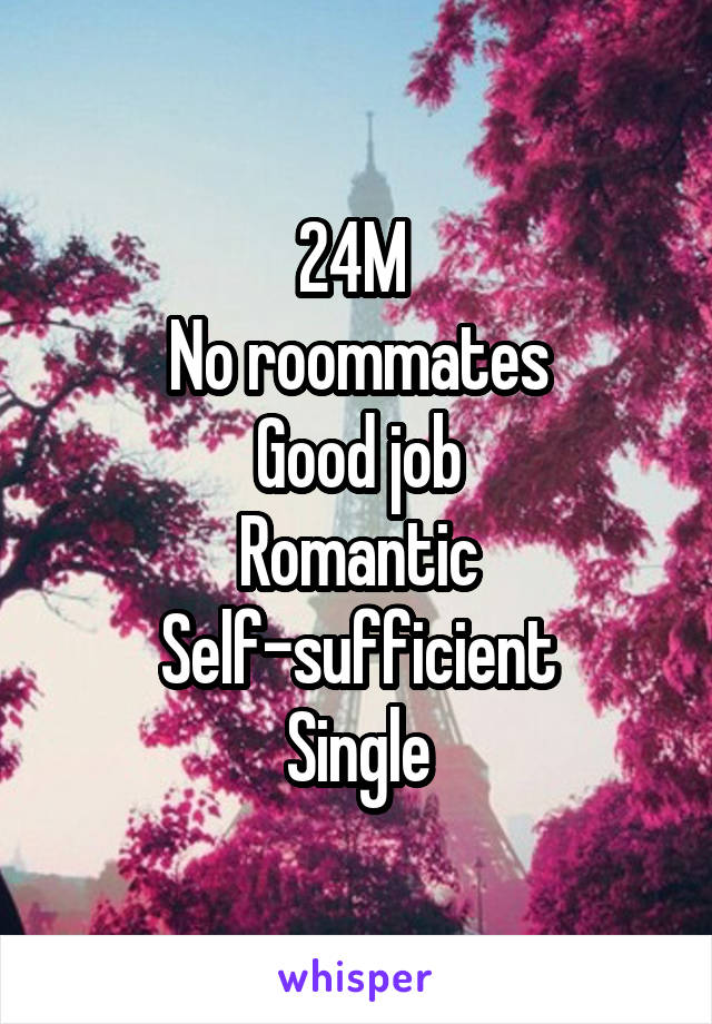 24M  No roommates Good job Romantic Self-sufficient Single