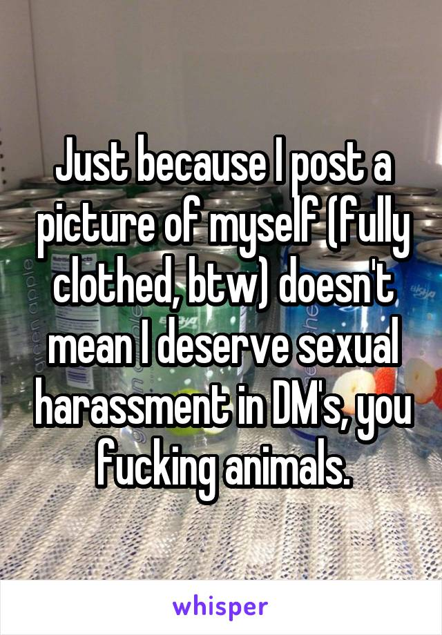 Just because I post a picture of myself (fully clothed, btw) doesn't mean I deserve sexual harassment in DM's, you fucking animals.