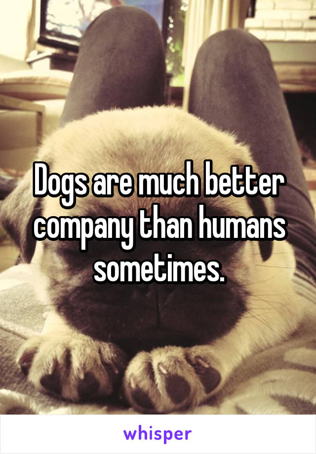 Dogs are much better company than humans sometimes.