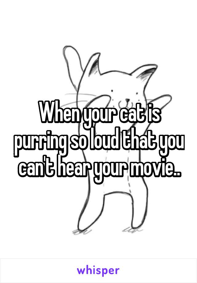 When your cat is purring so loud that you can't hear your movie..