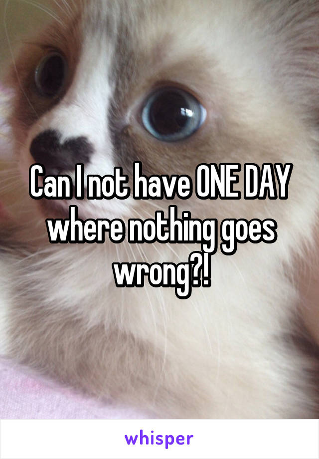 Can I not have ONE DAY where nothing goes wrong?!