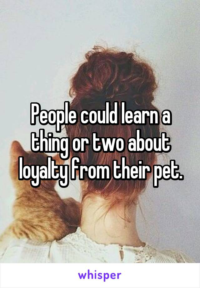 People could learn a thing or two about loyalty from their pet.
