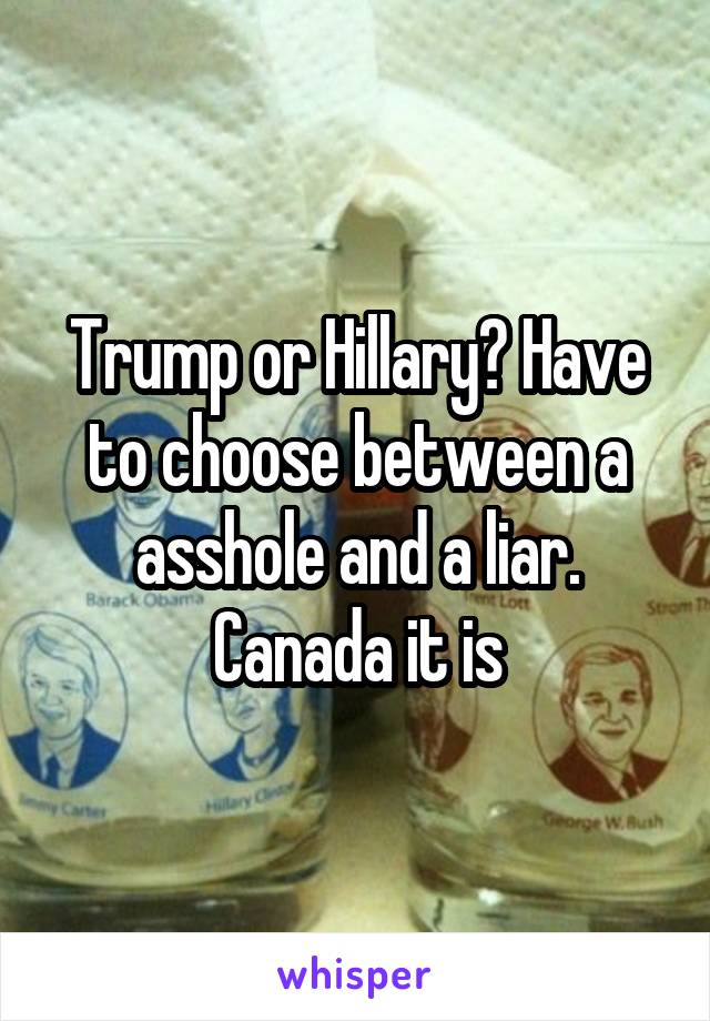 Trump or Hillary? Have to choose between a asshole and a liar. Canada it is