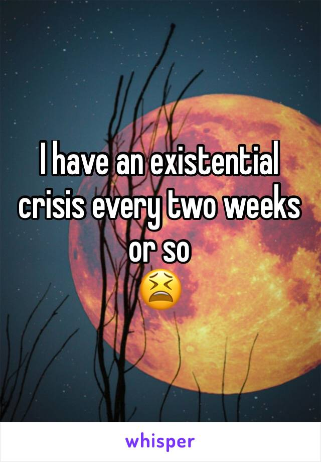 I have an existential crisis every two weeks or so  😫
