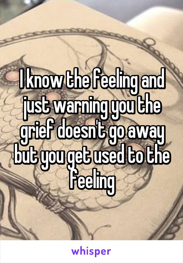 I know the feeling and just warning you the grief doesn't go away but you get used to the feeling