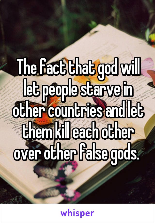 The fact that god will let people starve in other countries and let them kill each other over other false gods.