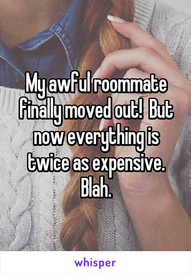 My awful roommate finally moved out!  But now everything is twice as expensive. Blah.