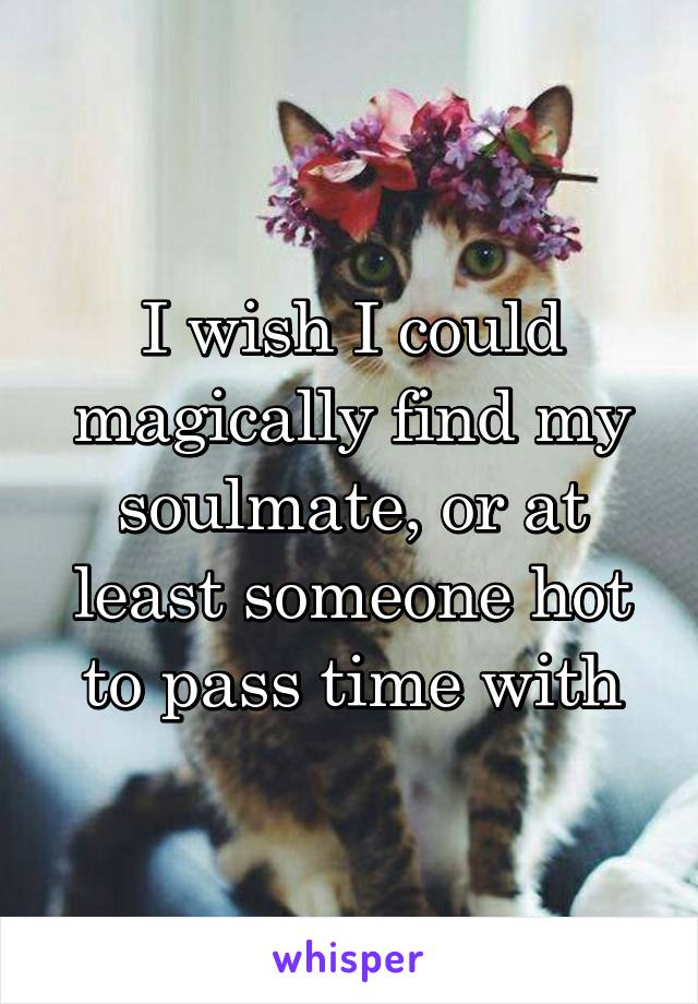 I wish I could magically find my soulmate, or at least someone hot to pass time with