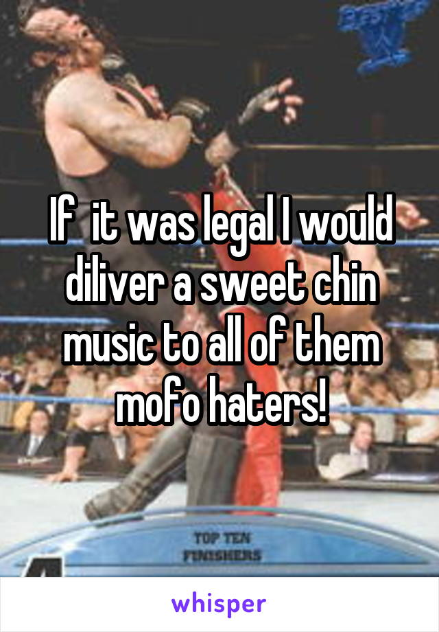 If  it was legal I would diliver a sweet chin music to all of them mofo haters!