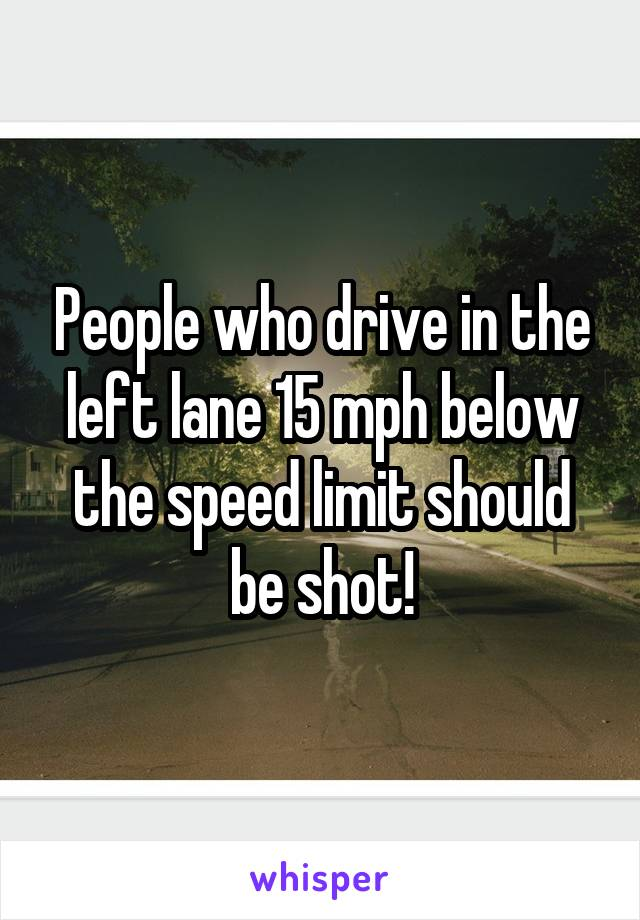 People who drive in the left lane 15 mph below the speed limit should be shot!