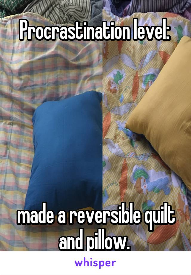 Procrastination level:        made a reversible quilt and pillow.