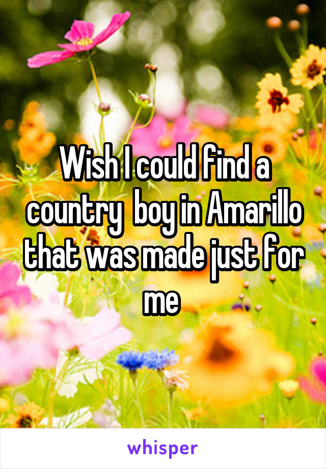 Wish I could find a country  boy in Amarillo that was made just for me
