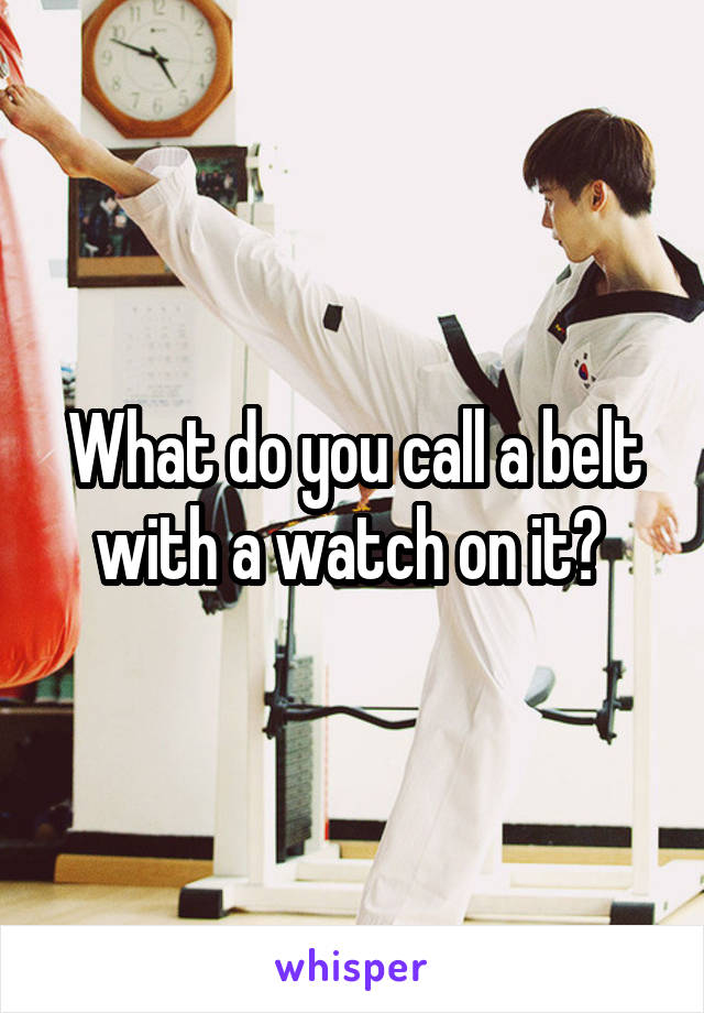 What do you call a belt with a watch on it?