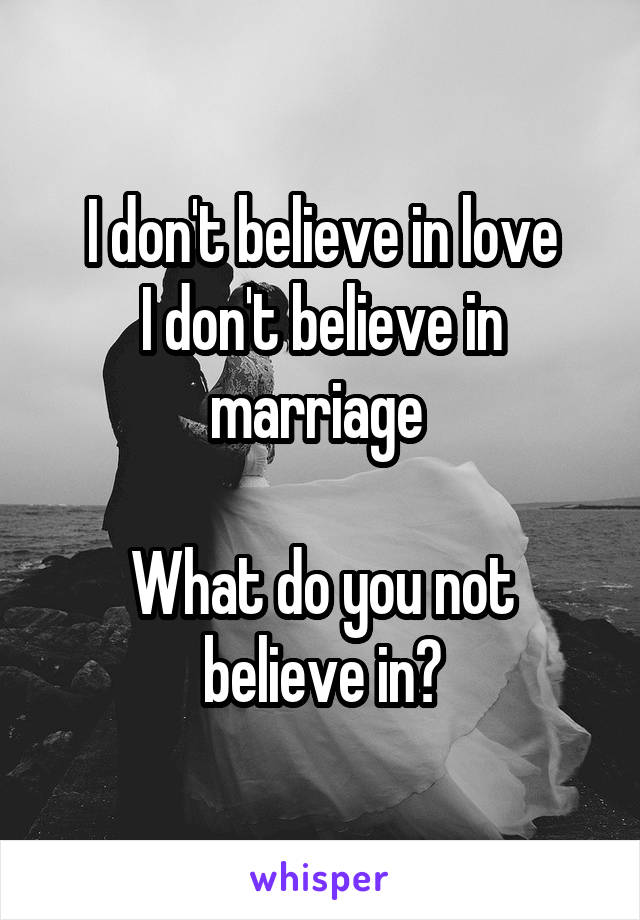 I don't believe in love I don't believe in marriage   What do you not believe in?
